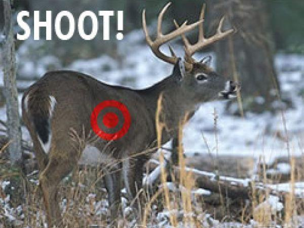 hunting-net-139.jpg