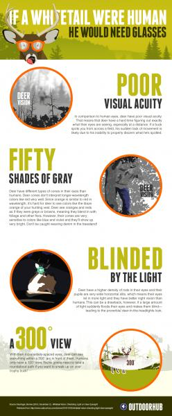 outdoorhub-infographic-deer-eyesight-works-2014-10-06-19-55-24-54.jpg